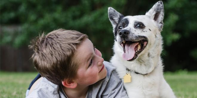 a boy smiling with his healthy dog